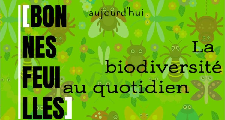 La biodiversité au quotidien : bonnes feuilles