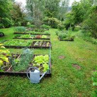 Le potager du Jardin de la Ferrière