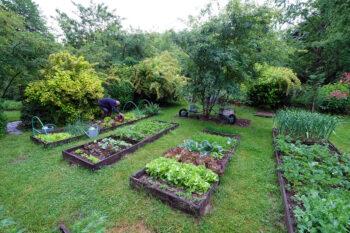 Potager Jardin de la Ferrière
