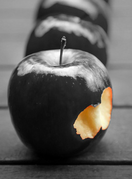 la pomme noire du tibet