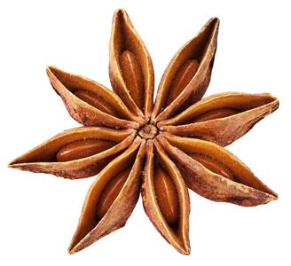épices - badiane ou anis étoilé