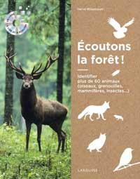 arbres : les sons de la forêt