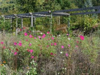 Jardin le Mas des Béalières