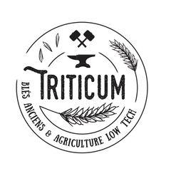 Triticum - Logo