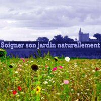 Prenre soin du jardin naturellement