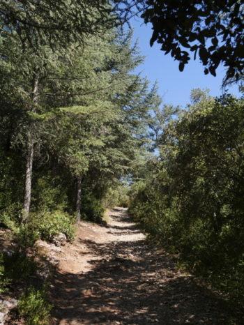 Sentier du Portalas - Luberon