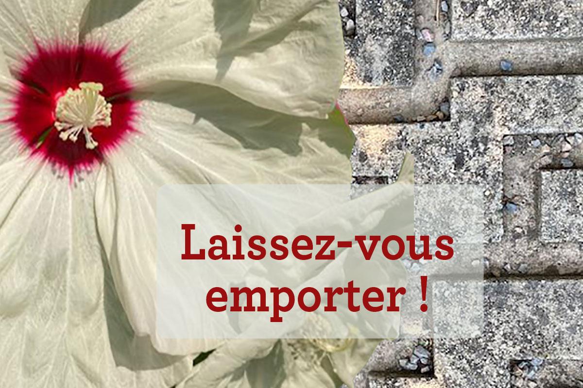 Labyrinthes aux 1000 fleurs :