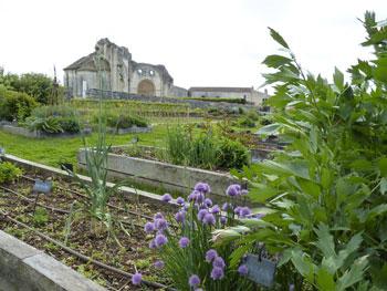 Le potager de l'abbaye de Trisay