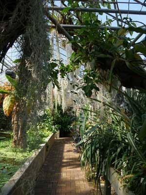 Jardin Jean-Marie Pelt - Nancy