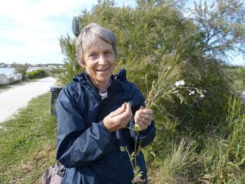 Rochefor - La botaniste Anne Richard
