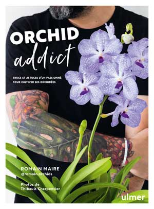 Orchid addict