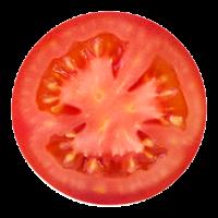Tomates : graines