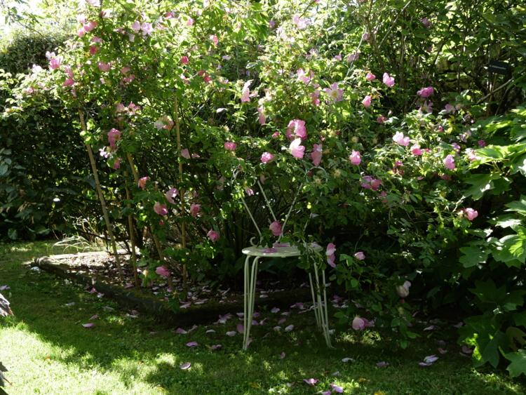 Visite du jardin