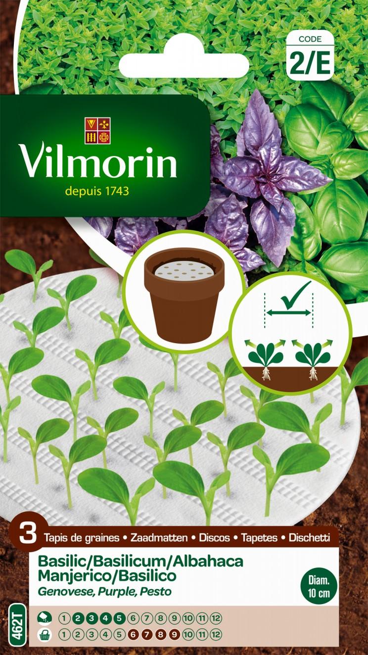 Basilics Vilmorin