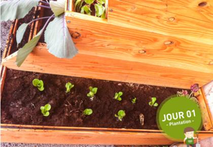 Easy Jardin de cortival - Jour 1