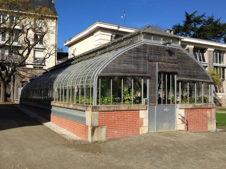La serre tropicale du jardin botanique de nantes hortus focus i mag for Jardin des plantes nantes de nuit