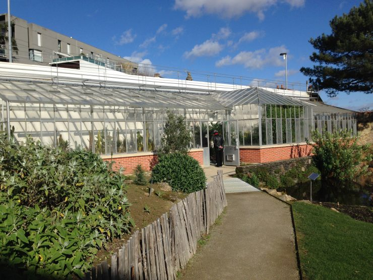 Dans la Serre des Canaries, au Jardin des Plantes de Nantes ...