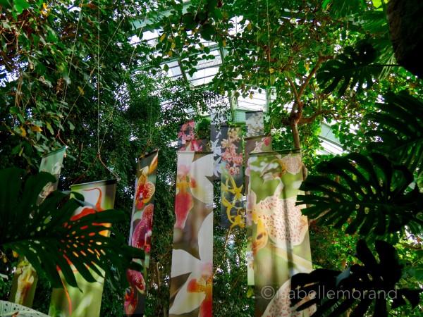Kakemono jardin de plantes