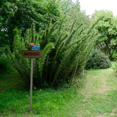 Les arbres du monde - Huelgoat